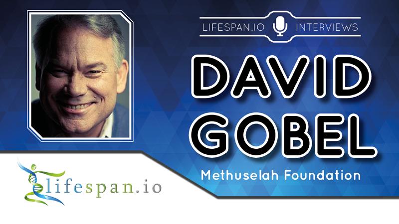 Интервью с Дэвидом Гобелем - 1
