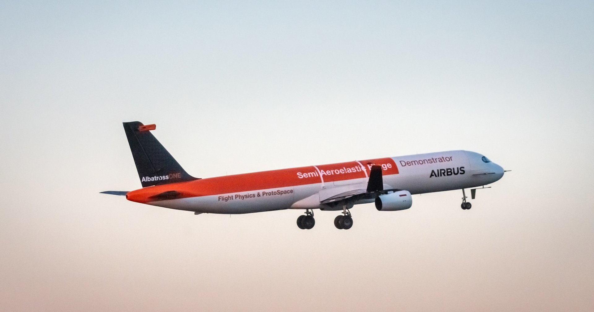 Какими будут крылья самолетов будущего: снова берем пример с птиц