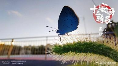 Фотогалерея дня: очень красивые фото, снятые на камеру смартфона Nubia Z20