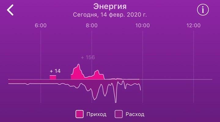 Браслет, который Путин видел: Healbe Gobe — по-прежнему единственный гаджет, который считает входящие калории - 13