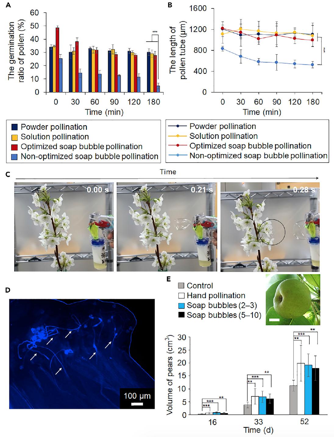 Мир без пчел: роботизированное опыление мыльными пузырями - 4
