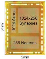IBM провела симуляцию нейрокомпьютера, сопоставимого с мозгом человека