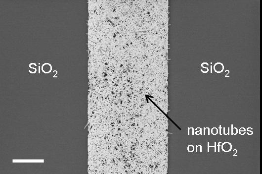 IBM разместила более 10 тыс. углеродных нанотрубок на микросхеме
