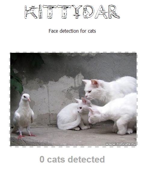 Kittydar: кошачий детектор на JavaScript