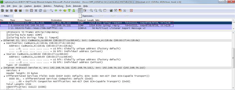 Ping flooding атака с использованием WinPcap
