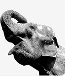 PostgreSQL 9.2 — официальный релиз
