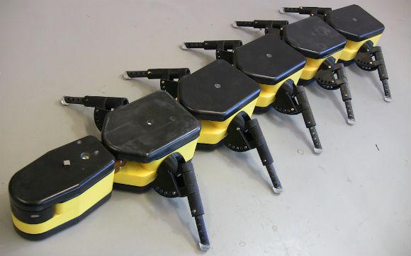 Salamandra Robotica II — робот амфибия, который плавает в воде и ползает по земле