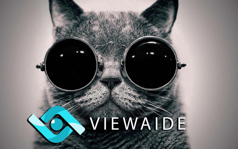 Viewaide: теперь и web сервис