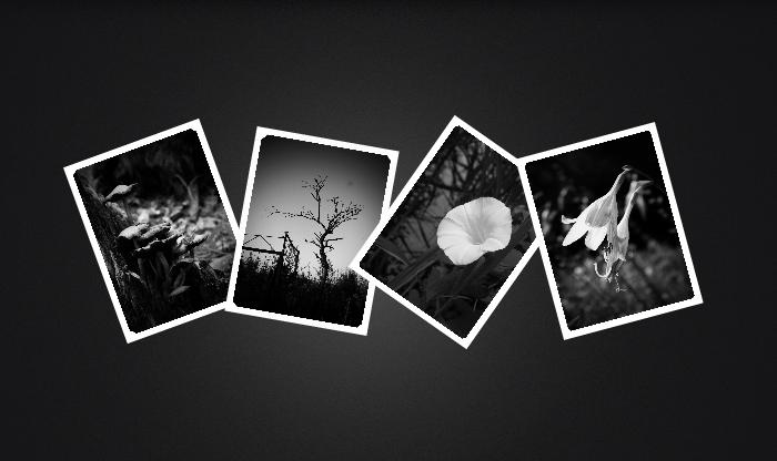 Анимированные картинки на CSS3