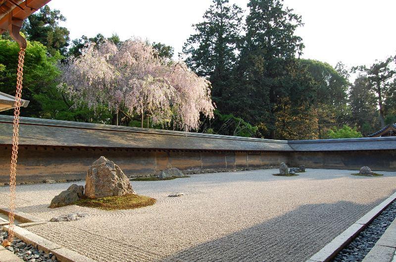 Аспирантура в Киотском Университете. Продолжение