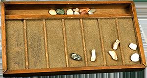 Бисерная сортировка (Bead sort)