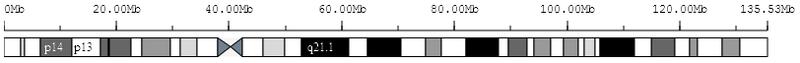 Браузеры генома