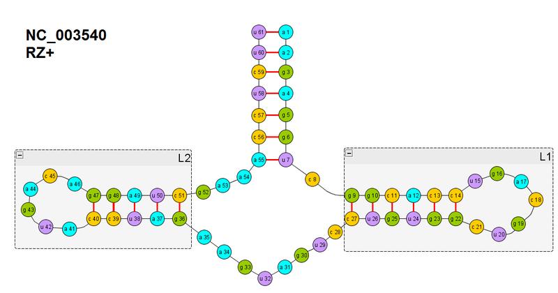 Часть №6. Введение в сворачивание многоспиральных РНК