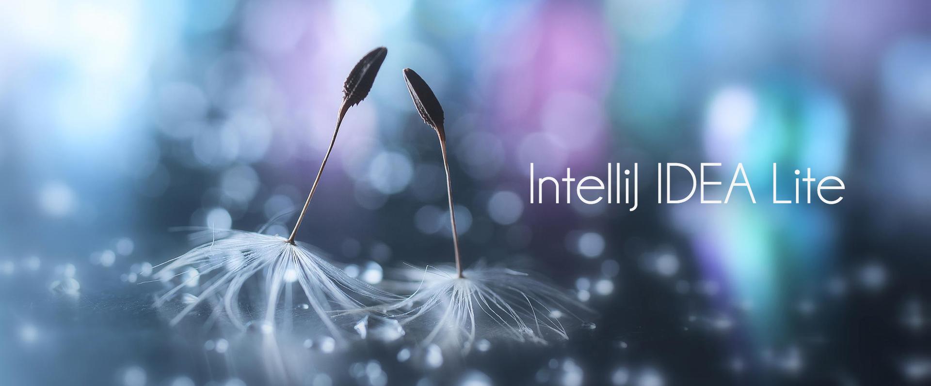 Что ждет IntelliJ IDEA впереди?