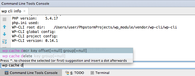 Использование PhpStorm для разработки под WordPress