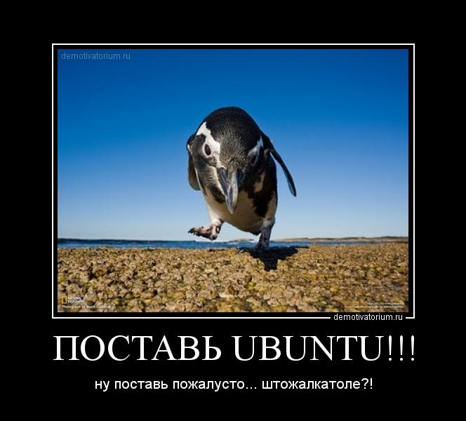 Как Ubuntu помогает сохранить ваш бизнес. Практика внедренца