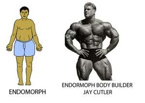 Как из толстого программиста (эндоморфа) стать прекрасным атлетом