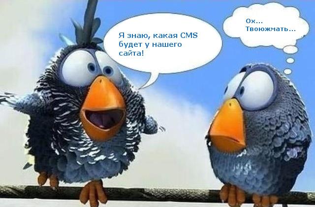 Какая CMS лучше всего подходит для поискового продвижения сайта