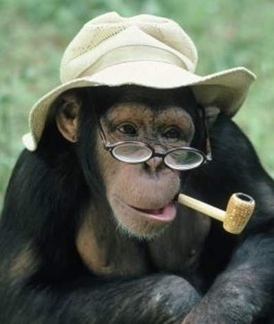 Этот code monkey познал дао ООП. А ты, Люк?