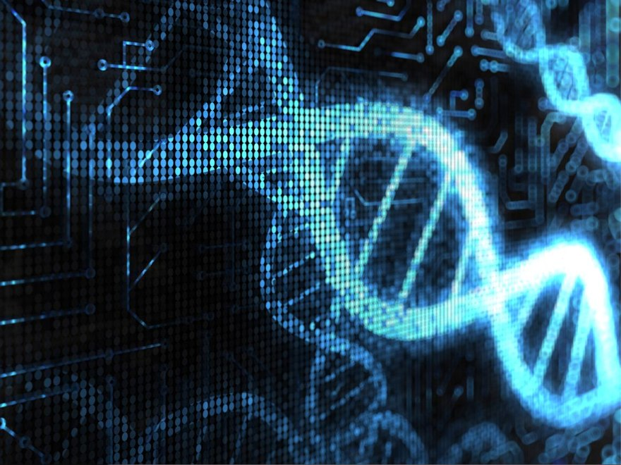 Материалы летней школы по биоинформатике