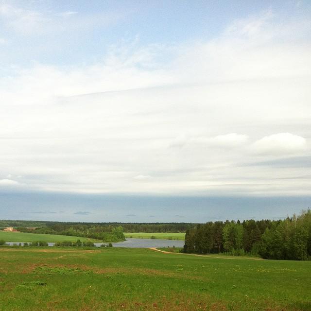 Вид с участка на пруд
