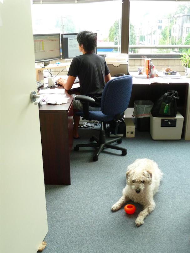 Наши в Ванкувере: как ученый из Кемерово создает виртуального тренера для MIO