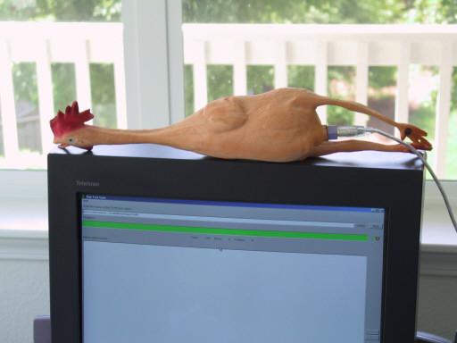 Изображение компьютера с подключённым к нему резиновым цыплёнком