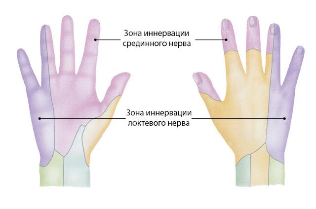 Опыт использования вертикальной мыши или спасаемся от туннельного синдрома
