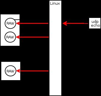 Особенности получения пакетов через raw socket в Linux
