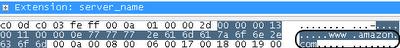 Первые несколько миллисекунд HTTPS соединения