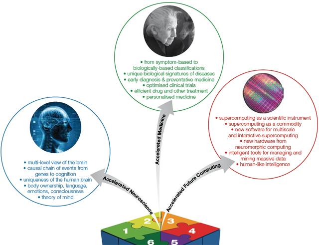 Проект «Человеческий мозг» официально стартовал