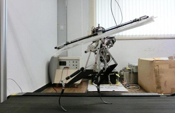 Пока робот, созданный в Корее, бегает «на привязи»