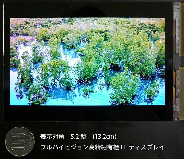 Дисплей, созданный специалистами Japan Display, предназначен для смартфонов