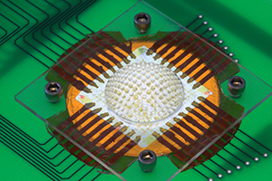 Камера образована массивом светочувствительных датчиков и миниатюрных объективов
