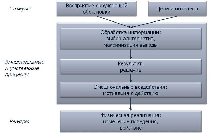 Введение в моделирование пешеходных потоков