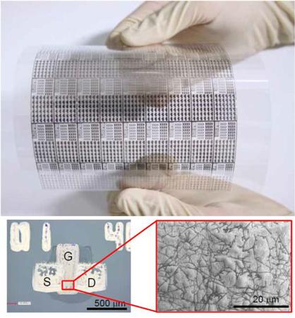 Японские специалисты использовали флексографическую печать нанотрубками для изготовления гибких дисплеев