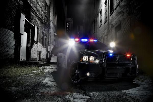 За подозреваемым в «пиратстве» англичанином приехал целый кортеж полицейских автомобилей